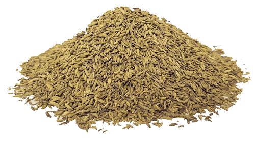 spezia semi di finocchietto per salumi