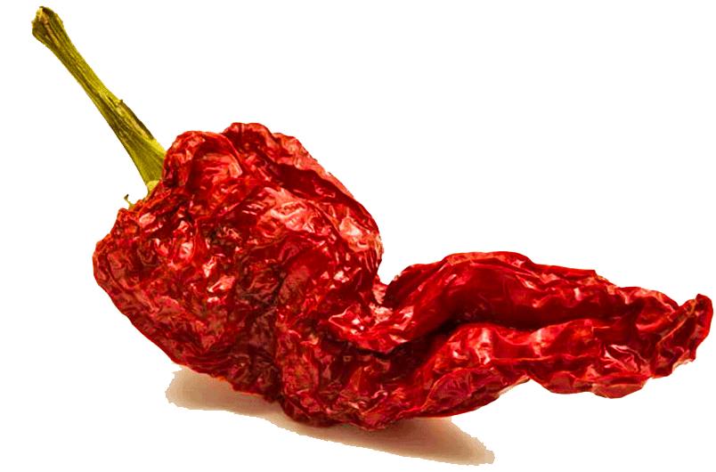 peperone crusko spezia